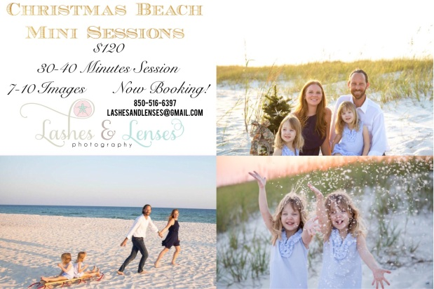 Perdido Key Christmas Mini Session