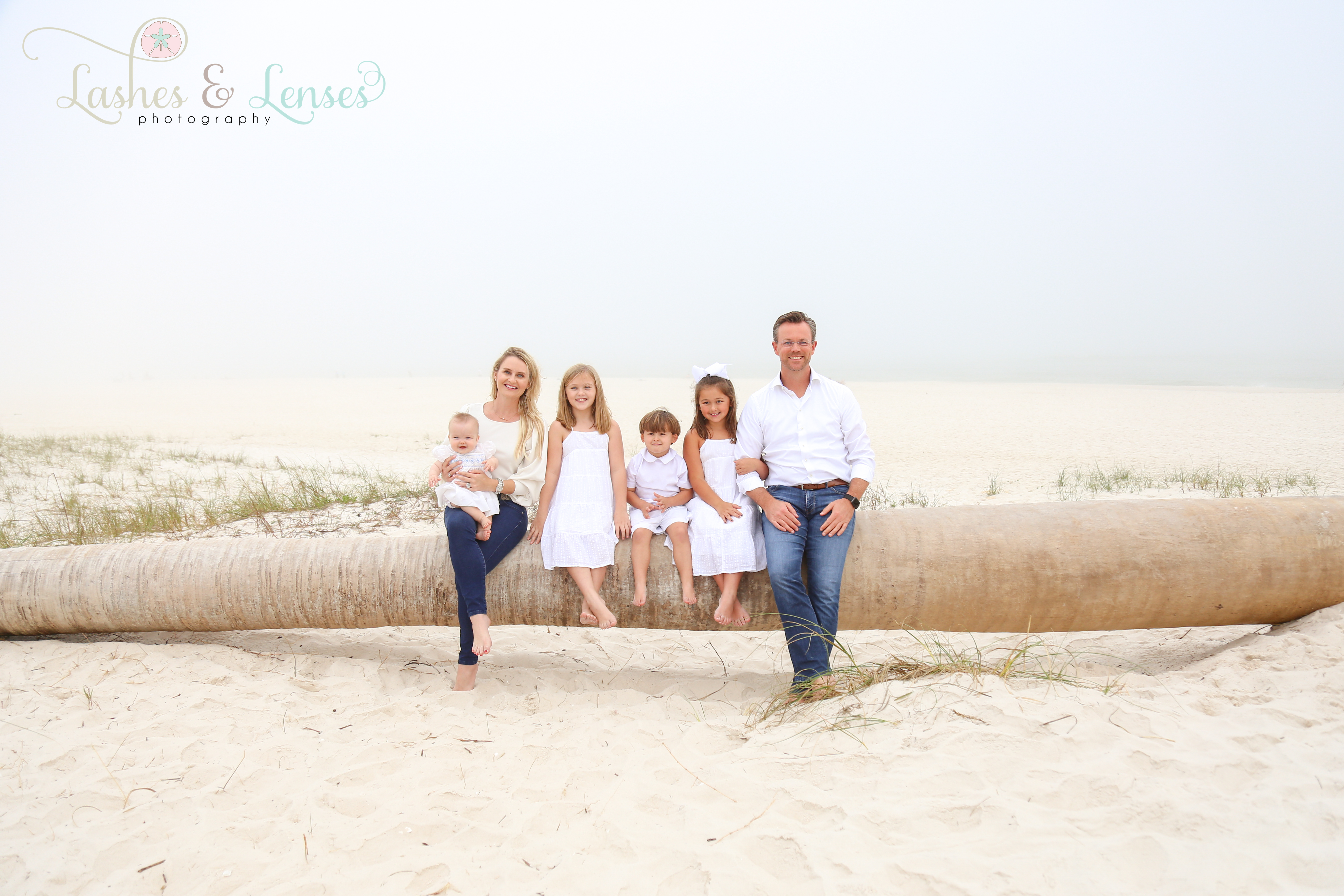 Family sitting on a washed up palm tree on the beach at Johnsons Beach in Perdido Key