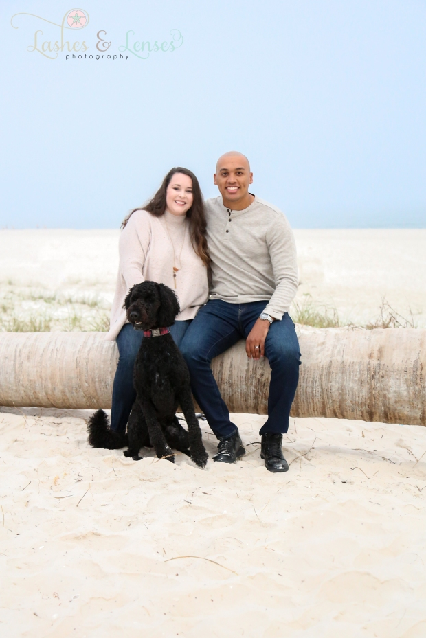 Young couple with their dog sitting on a washed up palm tree on the beach at Johnsons Beach in Perdido Key