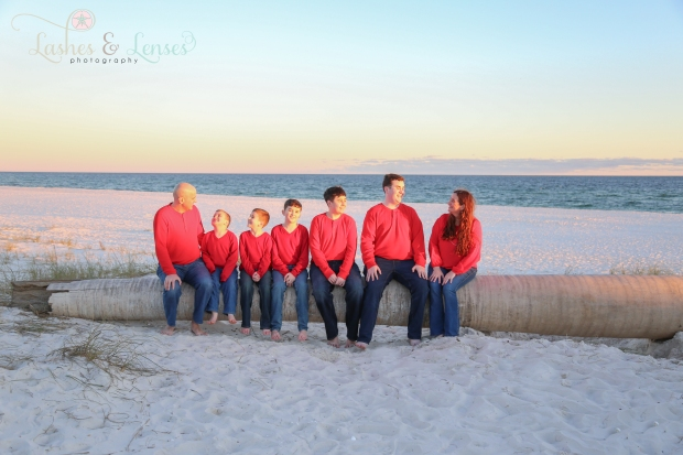 Family sitting on washed up palm tree on the beach at Johnsons Beach in Perdido Key