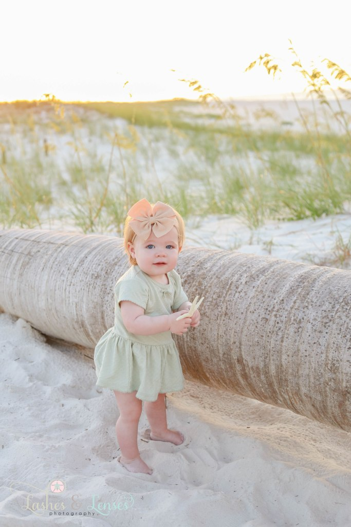 Baby girl holding a starfish and standing next to a washed palm tree at Johnsons Beach in Perdido Key Florida